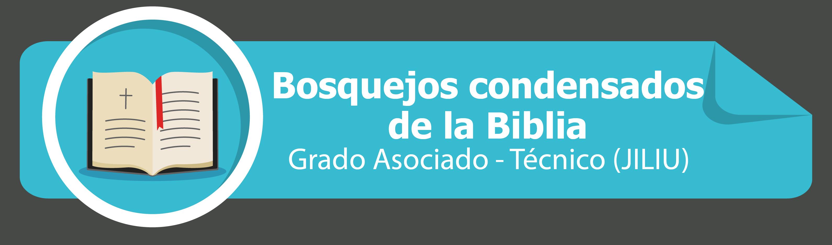 Bosquejos Condensados de la Biblia